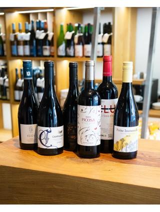Podzimní výběr červených vín